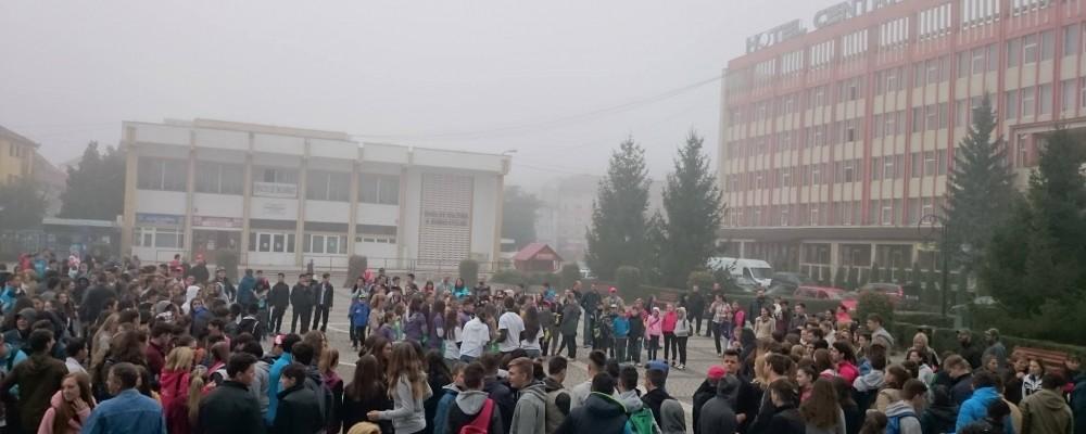 "Peste 850 de voluntari la campania ""Let's do it Romania!"""