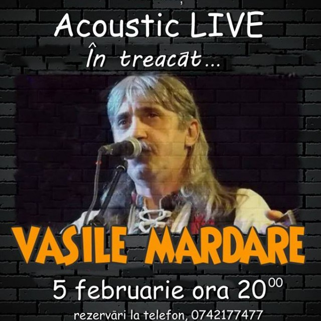 Concert folk Vasile Mardare – In treacat
