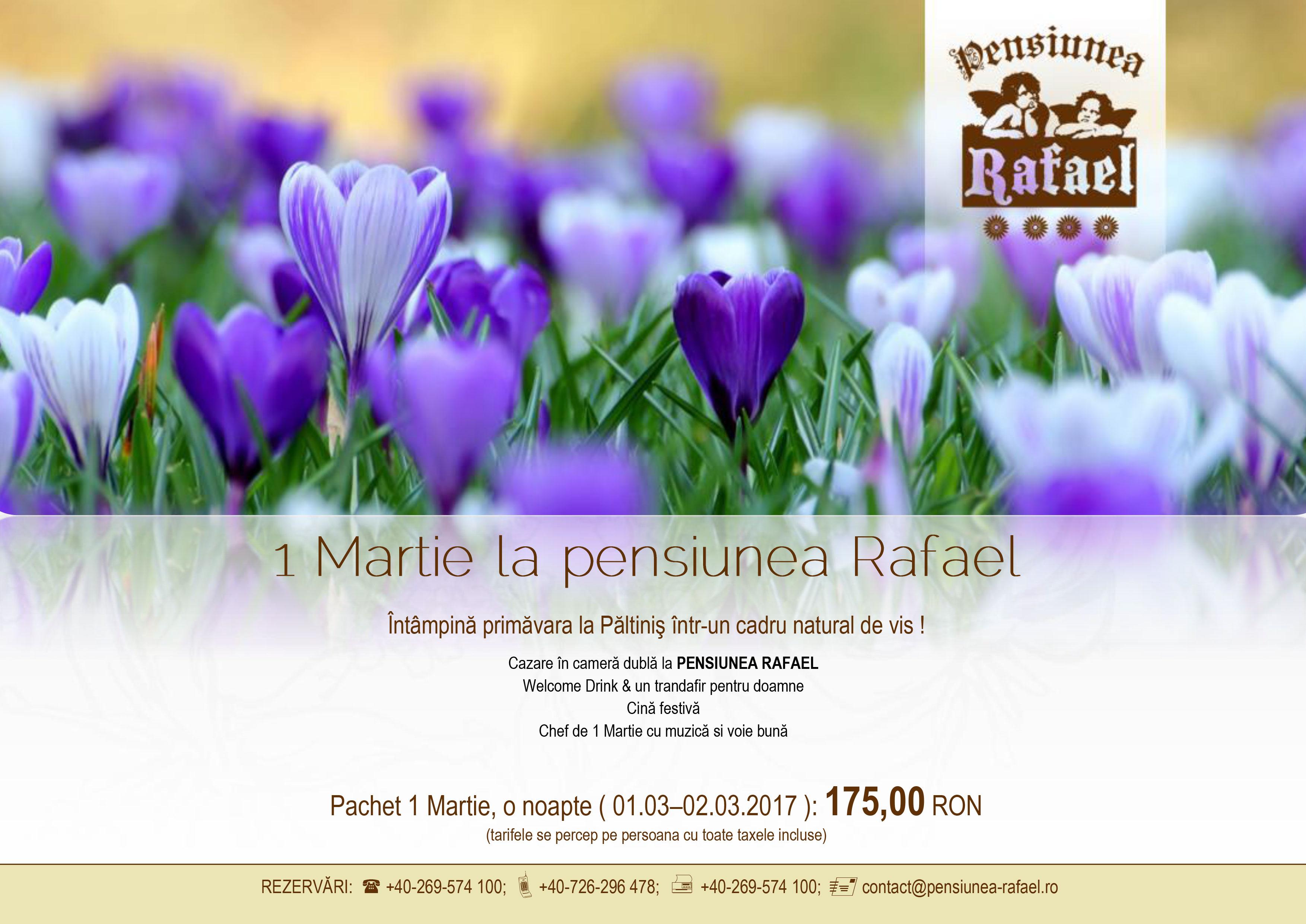 oferta-1-martie-2017-individual-pensiunea-rafael